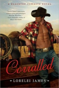 corralled, saddled and spurred, wrangled and tangled, one night rodeo, turn and burn, hillbilly rockstar, roped in, stripped down, wrapped and strapped, strung up, blacktop cowboys, epub, pdf, mobi, download